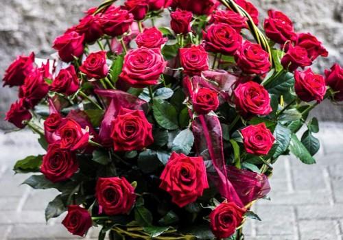 kosz róż racibórz