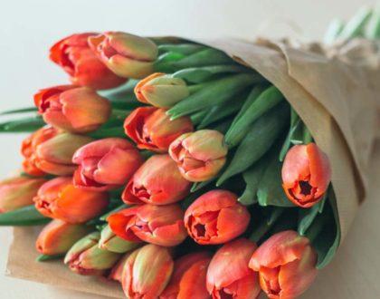 bukiet Przesyłki Kwiatowe raciborz-24