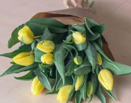 bukiet Przesyłki Kwiatowe raciborz-7
