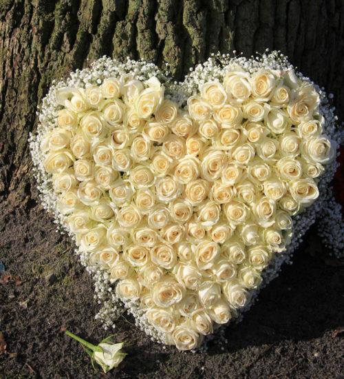 kompozycja-serce-bialych-roz-gipsowka